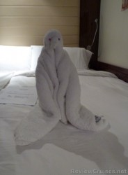 Penguin Towel animal in stateroom of Norwegian EPIC.jpg