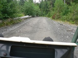 Adventure Kart Excursion in Ketchikan Alaska 3.jpg