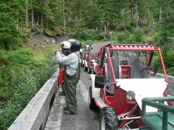 Adventure Kart Excursion in Ketchikan Alaska 5.jpg