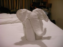 Elephant Towel Animal from NCL Star 2.jpg