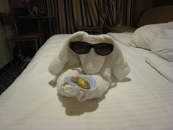 Towel Animal from the Norwegian Star.jpg