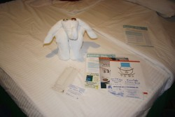 Elephant Towel Animal from NCL Star.jpg