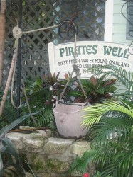 Key West Cruise Excursion - Pirate's Well.jpg