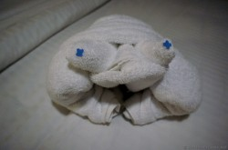 Frog towel animal aboard Norwegian Getaway.jpg