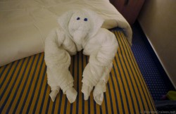 Man sticking out tongue Towel Animal from Carnival Breeze.jpg