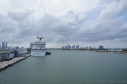 View of Rear of Carnival Breeze docked on Dodge Island Miami.jpg