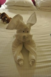 Dog towel animal Norwegian Gem.jpg
