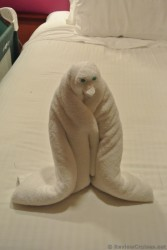 Penguin towel animal from Norwegian Gem.jpg