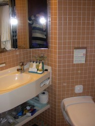 Bathroom of a Rotterdam suite cabin.jpg