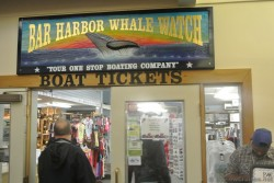Location to buy boat tickets for Bar Harbor Whale Watch.jpg