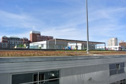 Roof top lawn and garden on Halifax building next to cruise terminal.jpg