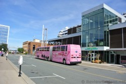 Big Pink Sightseeing Tour Bus parked outside Halifax Seaport Farmers' Market.jpg
