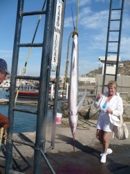 Large freshly caught Marlin hanging at the cabo pier.JPG