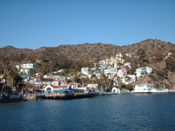 The town of Avalon as viewed from tender boat