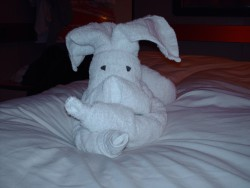 A Towel Rabbit Animal