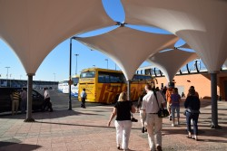 Cruise Excursion Buses at Port of Malaga Parking Lot.jpg