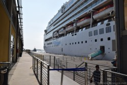 Venice Cruise Port Ship Crew Member Exit and Entrance Area.jpg