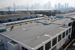 NCL Cruise Ship Terminal Area & View of Miami Skyline.jpg
