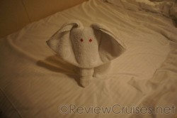 Elephant towel animal aboard the Norwegian Dawn.jpg