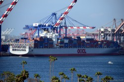OOCL Genoa Container Ship Docked in Port of Los Angeles.jpg