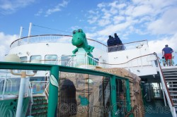 T-Rex Kid's Pool on the Norwegian Dawn.jpg