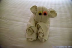 Koala Towel Animal
