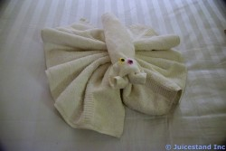 Lobster Towel Animal