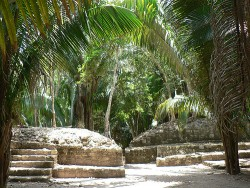 Chacchoben Mayan Ruins Excursion 9.jpg